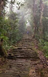 Ciudad Perdida - monumental stairway 640