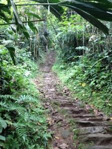 Ciudad Perdida - stairway 01 640