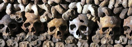 Catacombs bones 542