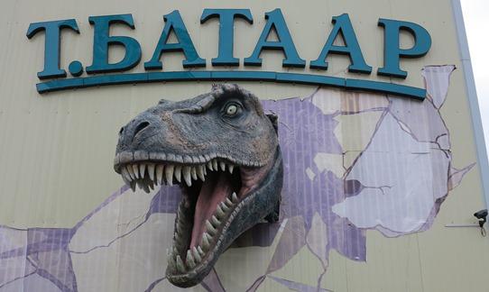 Ulaanbaatar dinosaur 542