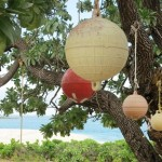 Ha'apai - fishing float tree 542