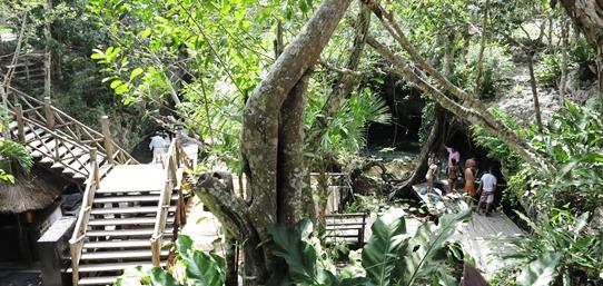 IMG_3508 - Gran Cenote, Tulum 542