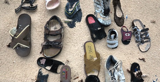 IMG_3605 - shoe pattern 542