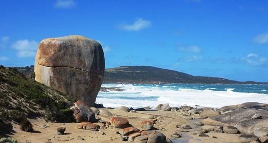 IMG_8782 - North-East River, Flinders Island - 540