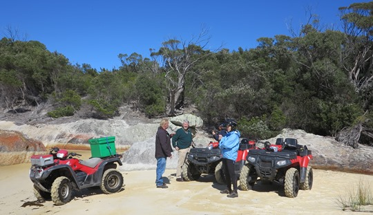 IMG_8827 - quad-bikes on Joe's Beach, south end of Flinders Island - 540