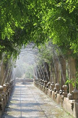 IMG_0393 - Jardines de Alfabia - 270