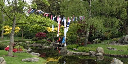 IMG_0891 - Kyoto Gardens, Holland Park - 540