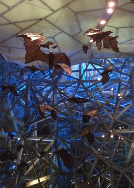 IMG_2494 - Federation Square bats - 270