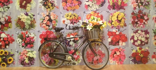 IMG_2746 - Ai Weiwei - flowers & bicycle - 540