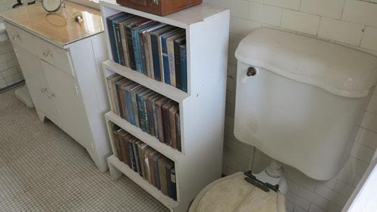 IMG_6050 - Hemingway toilet bookshelf - 540