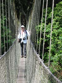 Tony the canopy walkway