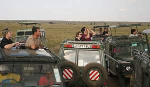 Safari Vehicles
