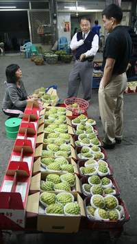 buying custard apples